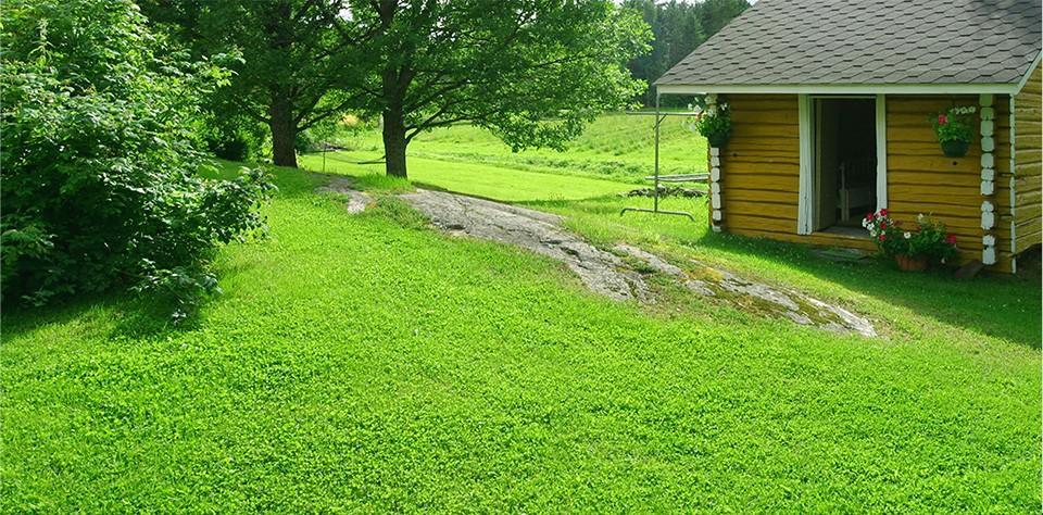 Kaunis, luonnollinen nurmikko pihallesi jopa kahdessa päivässä. Tilaa ja nauti!
